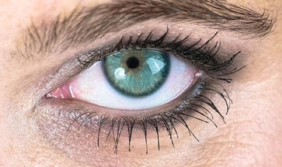 Therapie bei Augenarzt im Raum Neuss.