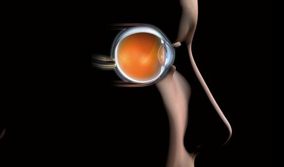 Makuladegeneration beim Augenarzt behandeln lassen.